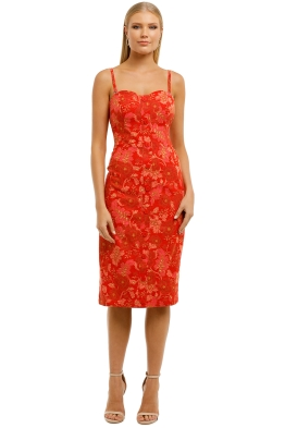 Ministry-of-Style-Hibiscus-Strapless-Dress-Print -Front