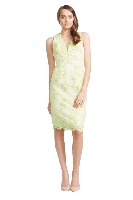 Alex Perry - Hydrangea Dress - Green - Front