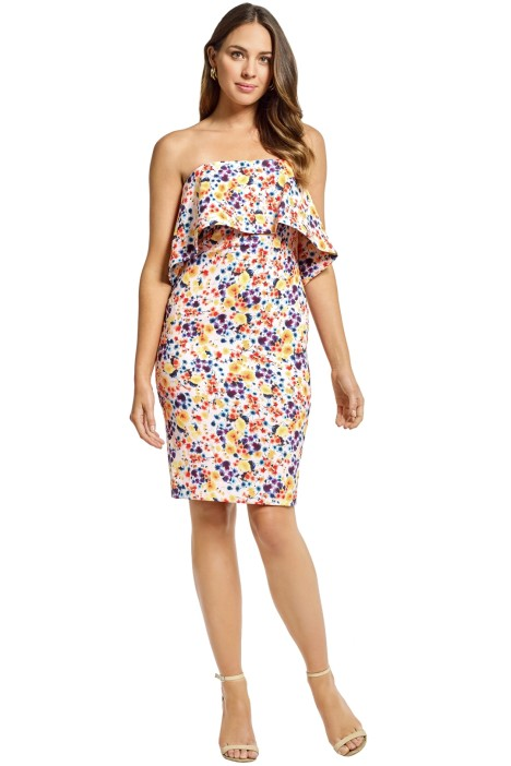 Badgley Mischka - Printed Strapless Popover Dress - Blush Multi - Front