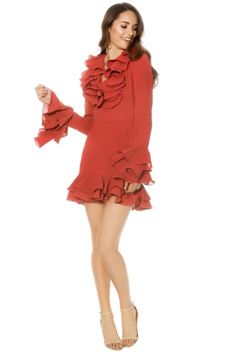 Cameo - Immerse LS Dress - Rose - Front