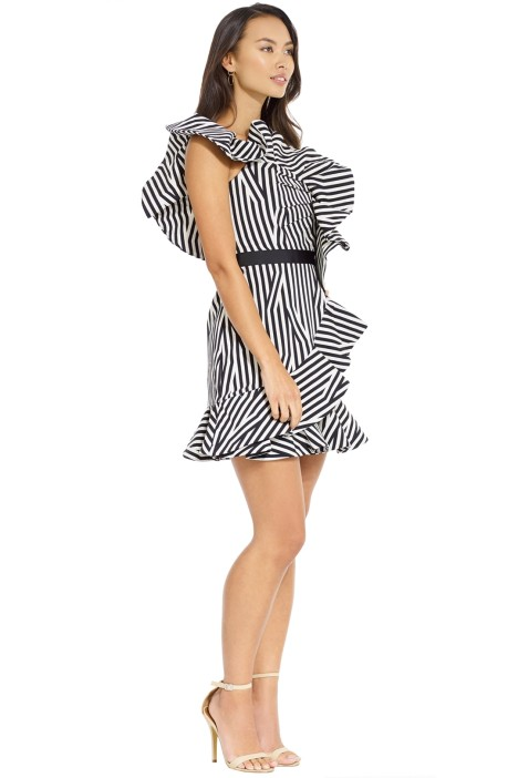 Abstract Ruffle Dress By Self Portrait For Hire Glamcorner