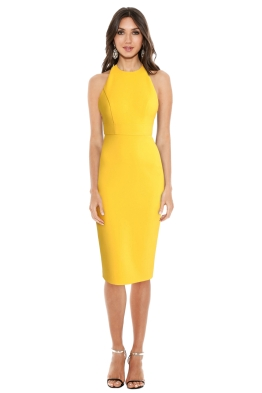 Alex Perry - Aileen Open Back Lady Dress - Front