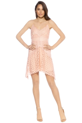 Keepsake - Bridges Lace Mini Dress Blush - Front