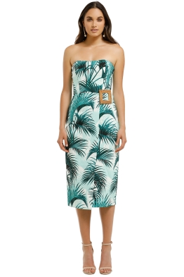 Pasuchas-Everglade-Strapless-Midi-Dress-Amazon-Front